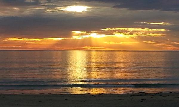 Moana Sunset.png
